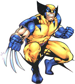 http://vidaordinaria.files.wordpress.com/2008/08/wolverine6.jpg