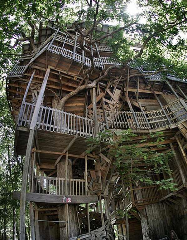 http://vidaordinaria.files.wordpress.com/2009/10/giant-tree-house1.jpg